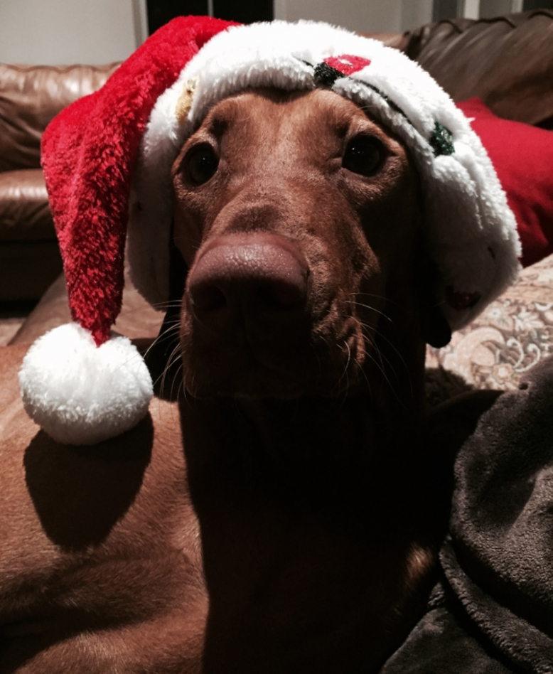 Is Santa Coming Tonight? Two Years Old December 2014