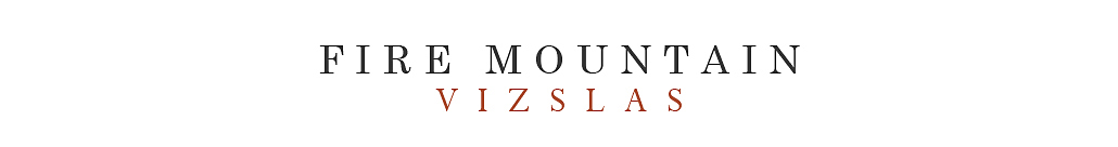 Fire Mountain Vizslas | Southern California logo